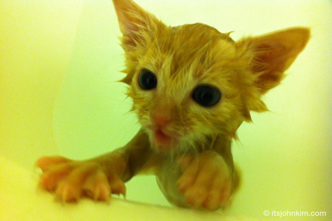 Faye taking a bath